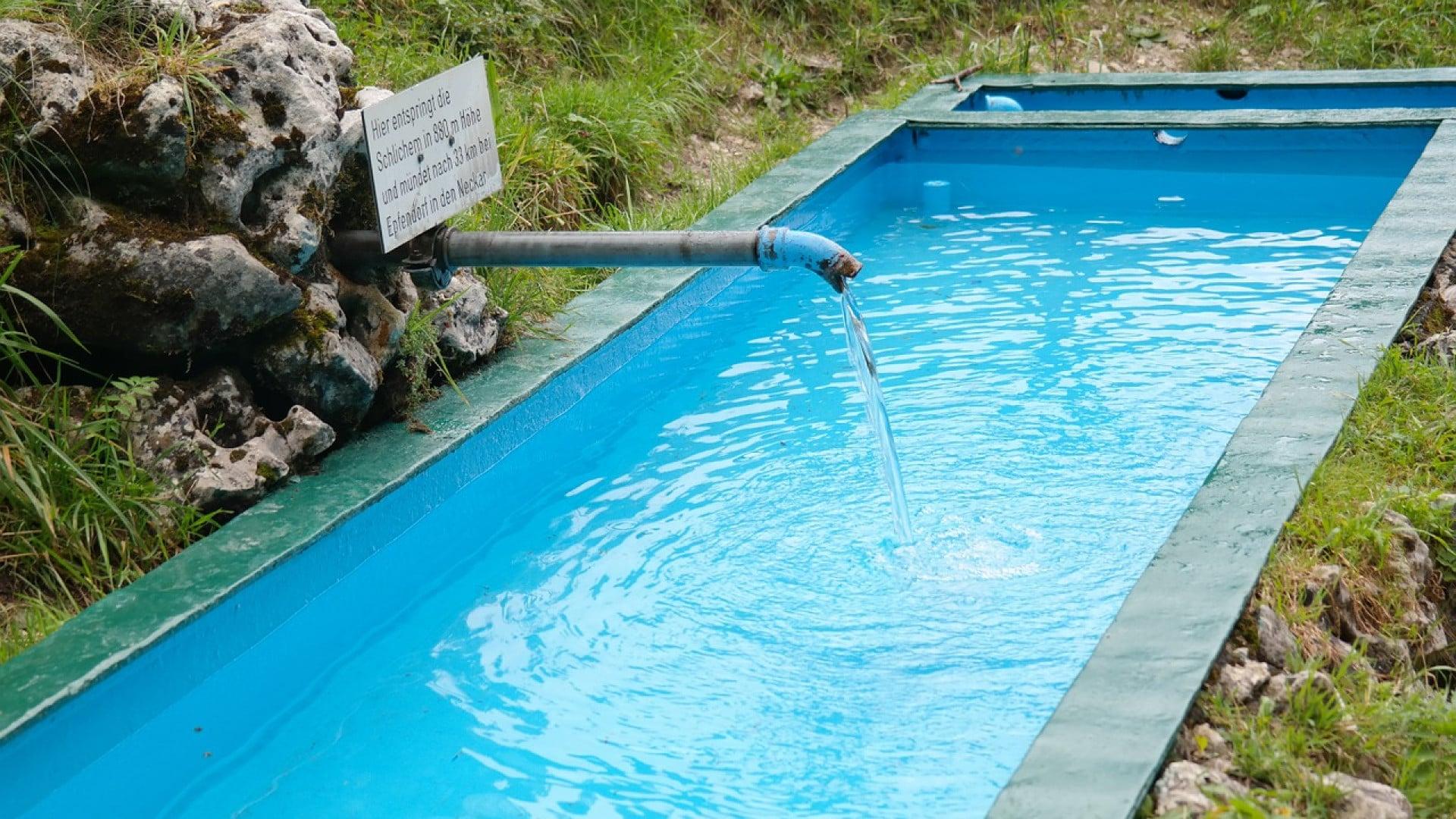 Adopter une piscine naturelle pour son jardin